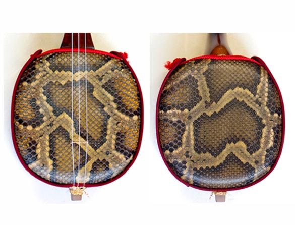 画像5: 沖縄産上質クロユシギ(ゆし木・和名:イスノキ)三線セット 真壁型 オリジナルカラクイ付 透明漆塗